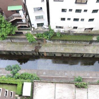 バルコニー下は渋谷川。お城のお堀みたいですね