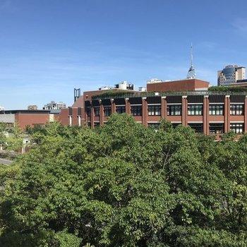 バルコニーからは豊かな街路樹と西南学院!(※写真は4階からのものです)