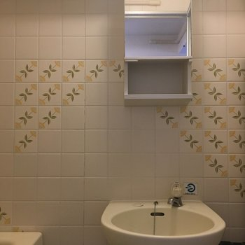 洗面台はコンパクト。