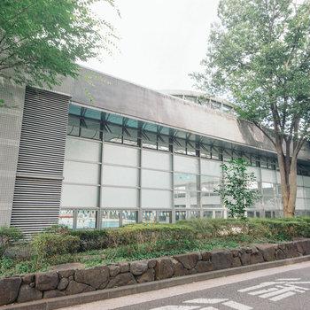 その向かいには、屋内プールも備えた武蔵野総合体育館。