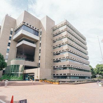 お隣は武蔵野市役所。便利。