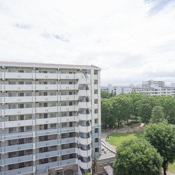 お部屋からも緑が見えます※同じ建物、8階からの眺望です