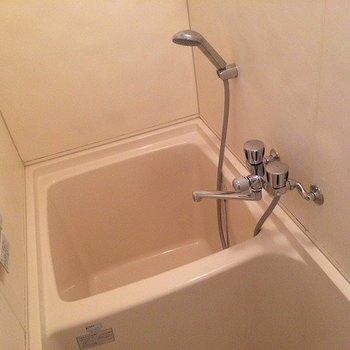 お風呂は狭いです。※前回募集時の写真です