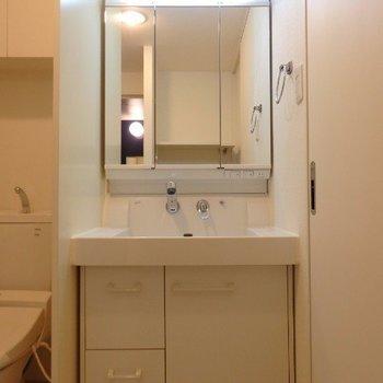 収納もたっぷりの洗面台※1階別部屋反転間取りの写真です。