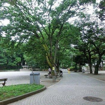 緑いっぱいの大塚公園