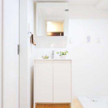左側には心ときめく可愛い独立洗面台があります。