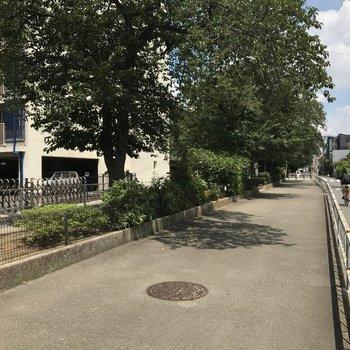 駅まで続く緑道