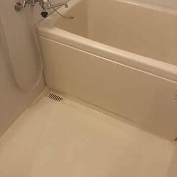 浴槽深めで、洗う場所もゆとりがあります!※写真は同じ階の105号室のものです