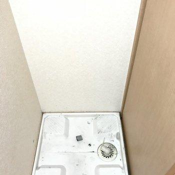 洗濯機は洗面台のお隣に。上部にはなんと扉付きの収納棚がありました!(※清掃前の写真です)