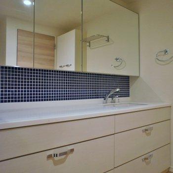 洗面台もビックサイズ収納もばっちり