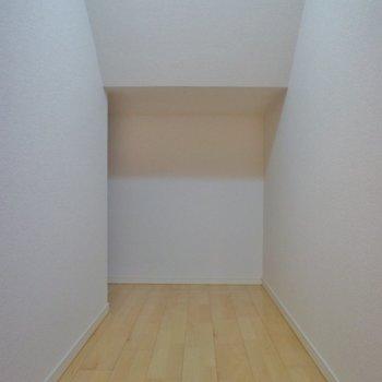 階段下に収納があります