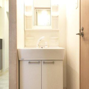 シャワーヘッド付きの洗面台!