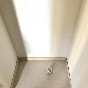 そして玄関横に洗濯機!一人暮らし用がちょうどいいサイズ!
