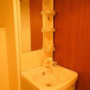 シャワーノズルつきが嬉しいですね※写真は同間取り別部屋のものです。