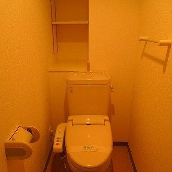 トイレもちゃんと収納できます※写真は同間取り別部屋のものです。