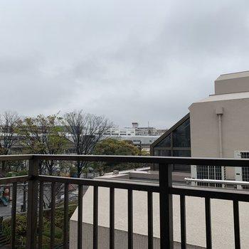 眺望は緑と公園と隣のマンション