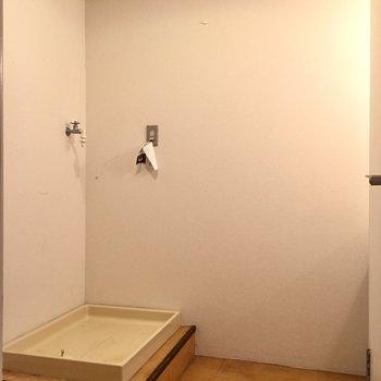 脱衣所の角には洗濯機を。