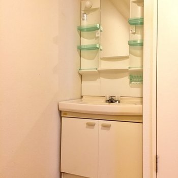 洗面台は新しくはないけど棚が多くていい感じ。