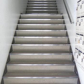 お部屋までは階段で2階へ!その後エレベーターで5階へ!