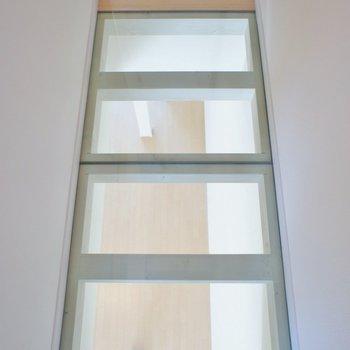 廊下はガラス張りでクール