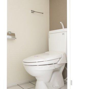 トイレにもチラッとグレー♥(※写真は通電前のものです)