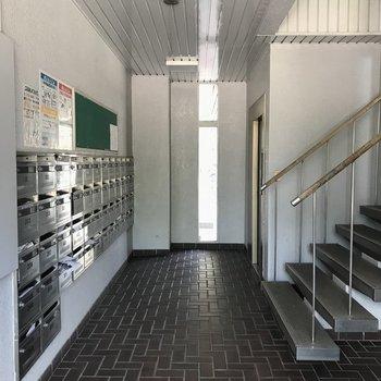 エントランス部分、エレベーターは奥に1台あります