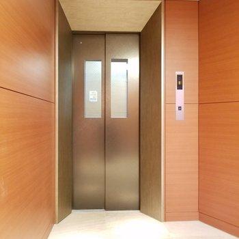 エレベーターも綺麗。