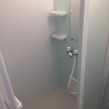 シャワールームはお手入れ楽そう!