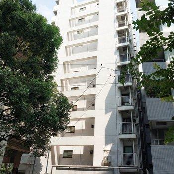 建物は箱崎JCTに面しています。