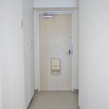 ドアにちょっぴり昭和感がありますが問題ナシ