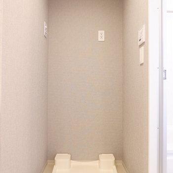 もちろん室内洗濯機置き場。