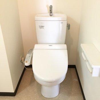 そしてその隣にトイレさんがいます。(※こちらは清掃前の写真です)
