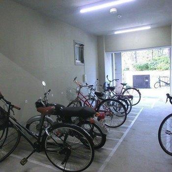 駐輪スペースもきっちと整頓されています!