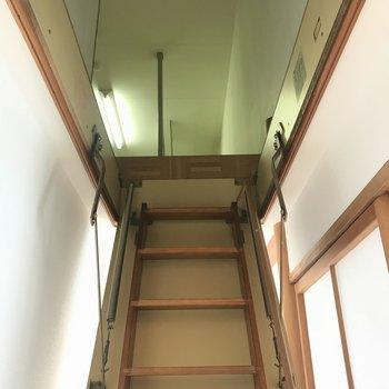 なんと廊下に隠し階段が!急なのでゆっくりとね。