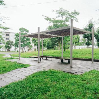 敷地内にはちょっとした公園が