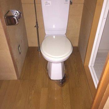 お手洗いはウォシュレット付き!(※撮影にはフラッシュを使用しています)※3階別部屋同間取りの写真です。