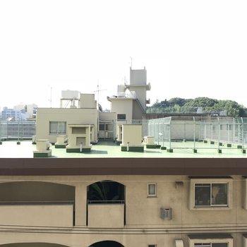 屋上ビュー。5階だからそこそこ高い。