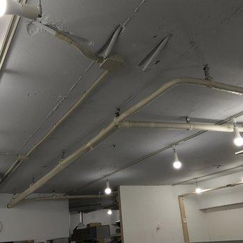 天井まで塗装済み、ライティングレールでおしゃれ
