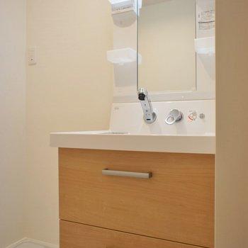 洗面台には収納がたっぷり。※写真は同タイプの別室
