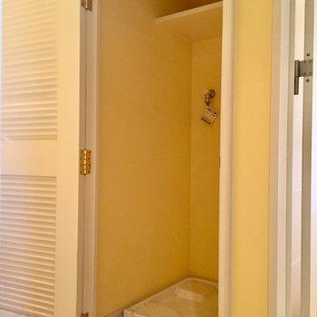 洗濯機は扉で隠せます