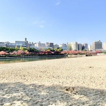また川を利用したビーチも。自然を身近に感じられますよ。