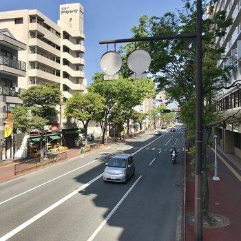 高宮通りには綺麗な並木道が