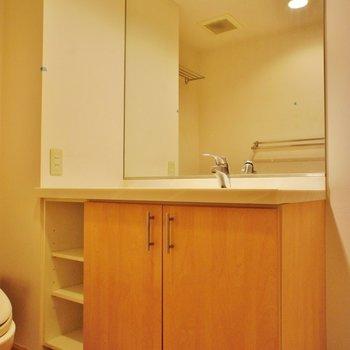 洗面台も高級感ありますね※写真は2階の同じ間取りの別部屋