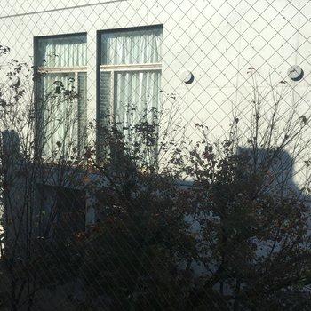 居室の窓からの眺め※同階別部屋からの眺めです