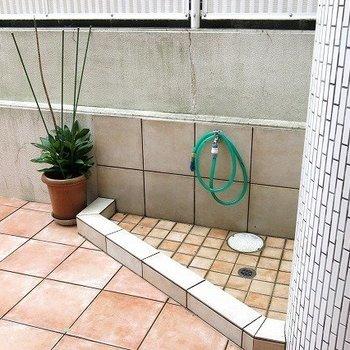 ペット用のシャワー!珍しい!※1階の同間取り別部屋の写真です