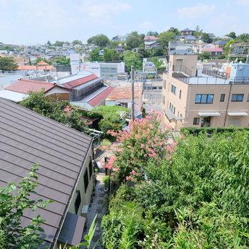 2階のお部屋と、1階無垢床のお部屋からの眺望がとっても素敵!
