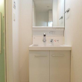 洗面台はシャワーヘッドタイプ〜!