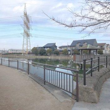 近くの毛田池。ワンちゃんのお散歩コースに便利。