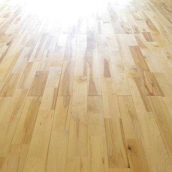 さらさらとした無垢床が気持良い!