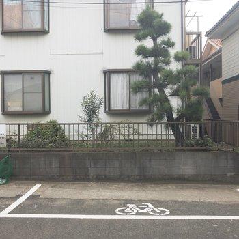 1階からの眺望はお隣さんと駐輪場~
